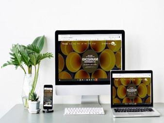 نمونه کار طراحی سایت ویوان